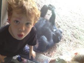 Thomas monkeying around