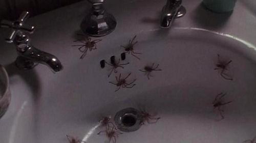 arachnophobia-movie-scene-1990